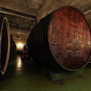 vinogradarstvo03